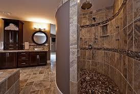 Delicieux Doorless Showers