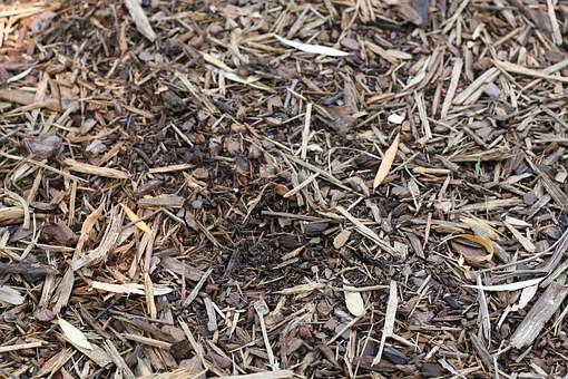mulch-1100555__340